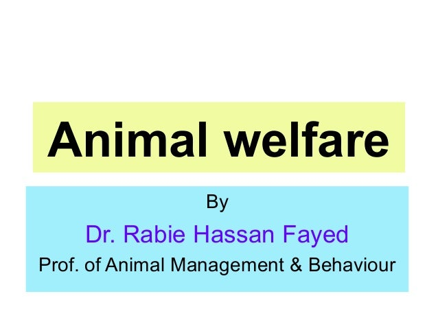 Animal welfare By Dr. Rabie Hassan Fayed Prof. of Animal Management & Behaviour