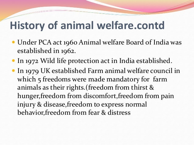 prevention of cruelty to animals act 1979 pdf