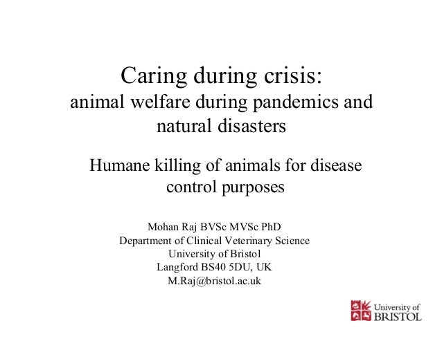 Caring during crisis:animal welfare during pandemics andnatural disastersHumane killing of animals for diseasecontrol purp...