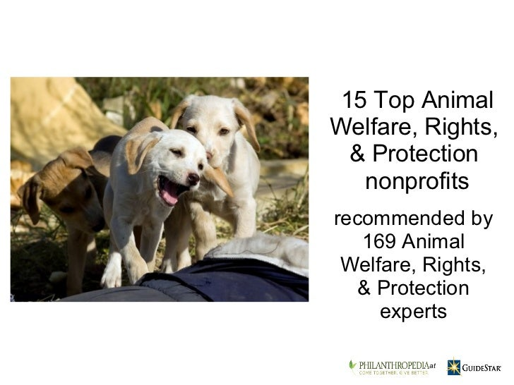 recommended by 169 Animal Welfare, Rights, & Protection experts 15 TopAnimal Welfare, Rights, & Protection nonprofits ...