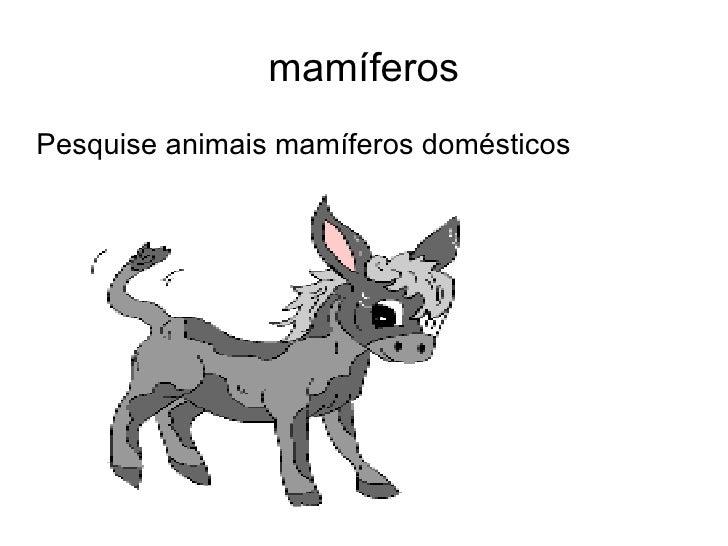 mamíferos <ul><li>Pesquise animais mamíferos domésticos </li></ul>