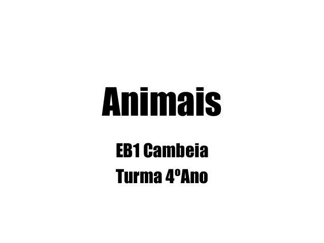 Animais EB1 Cambeia Turma 4ºAno