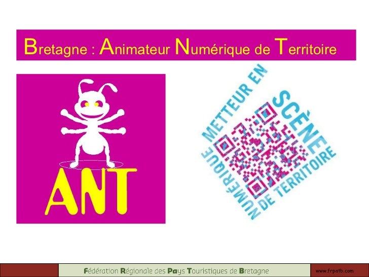 www.frpatb.com B retagne :  A nimateur  N umérique de  T erritoire