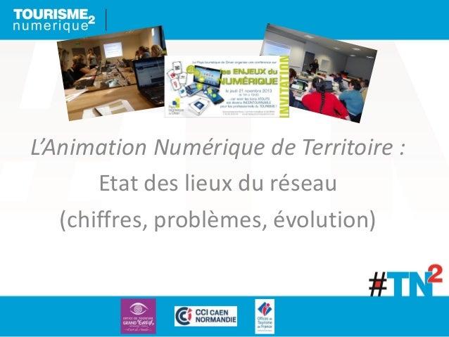 L'Animation Numérique de Territoire : Etat des lieux du réseau (chiffres, problèmes, évolution)