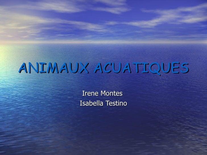 ANIMAUX ACUATIQUES Irene Montes  Isabella Testino