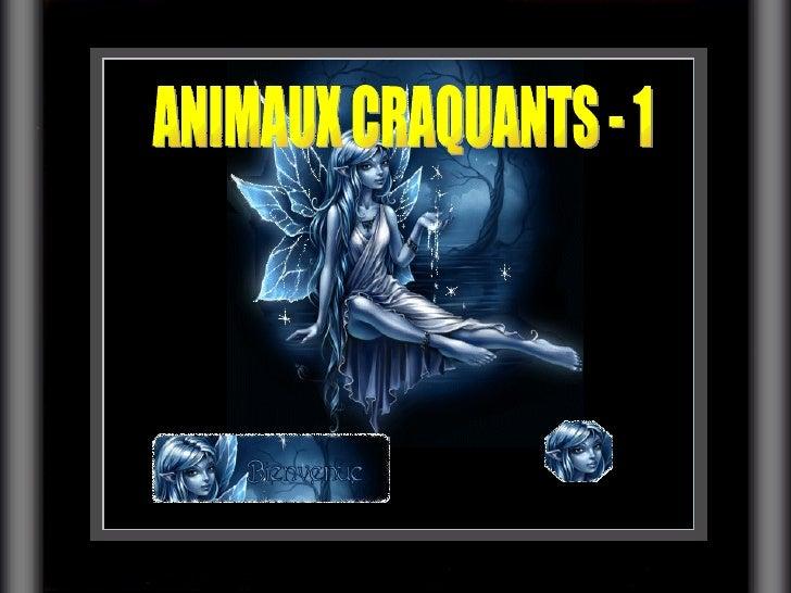 ANIMAUX CRAQUANTS - 1