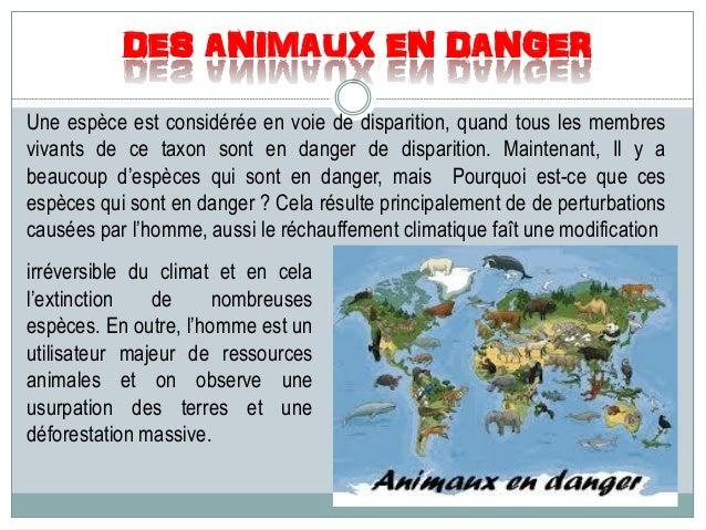 DES ANIMAUX EN DANGER Une espèce est considérée en voie de disparition, quand tous les membres vivants de ce taxon sont en...