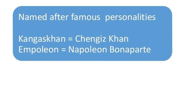 Named after famous personalities Kangaskhan = Chengiz Khan Empoleon = Napoleon Bonaparte