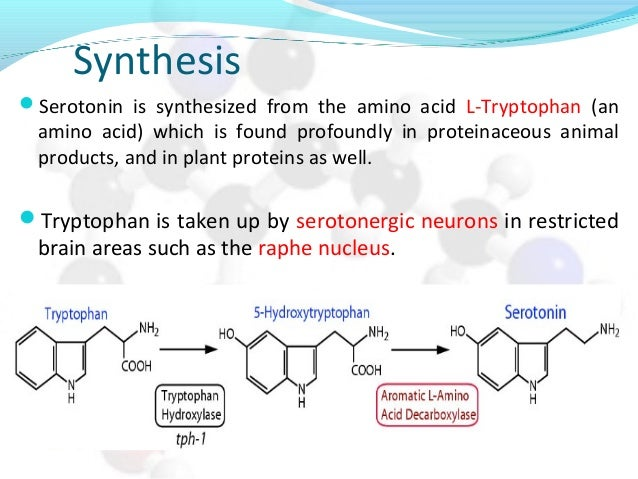 Synthesis Serotonin is synthesized from the amino acid L-Tryptophan (an amino acid) which is found profoundly in proteina...