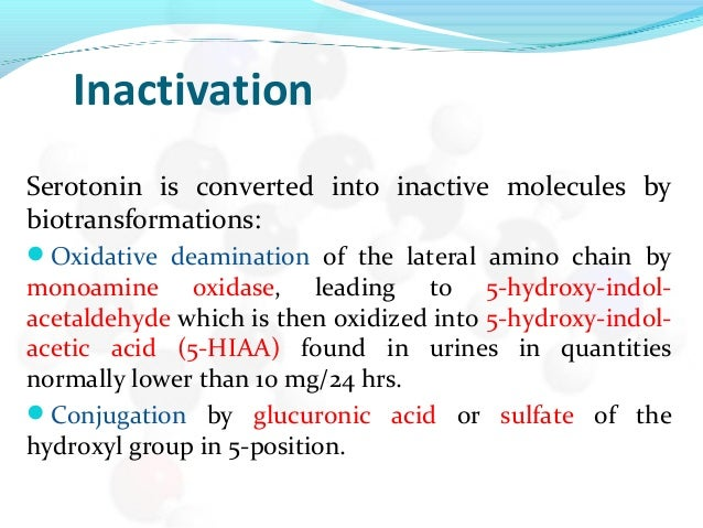 Inactivation Serotonin is converted into inactive molecules by biotransformations: Oxidative deamination of the lateral a...
