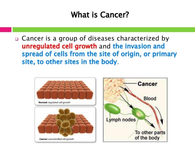 the introduction of cancer Overview: introduction to cancer  jessica evert, md  in most people's minds there is no scarier diagnosis than that of cancer cancer is often thought of as an untreatable, unbearably painful disease with no cure however popular this view of cancer may be, it is exaggerated and over-generalized cancer is undoubtedly a serious and.