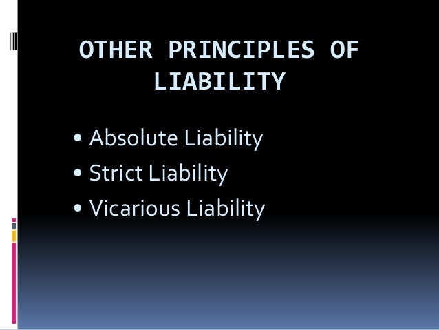 Basic Principles of Tort Supported by Case Law.