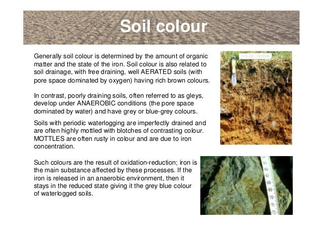 An introduction to soils soil formation and terminology for Soil zone of accumulation