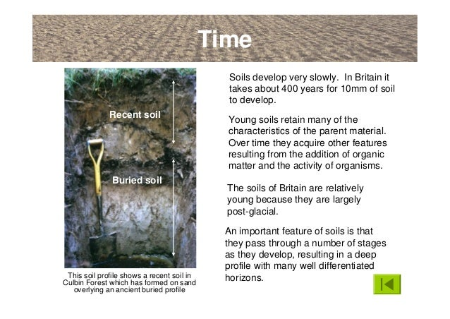 An introduction to soils soil formation and terminology for Soil formation