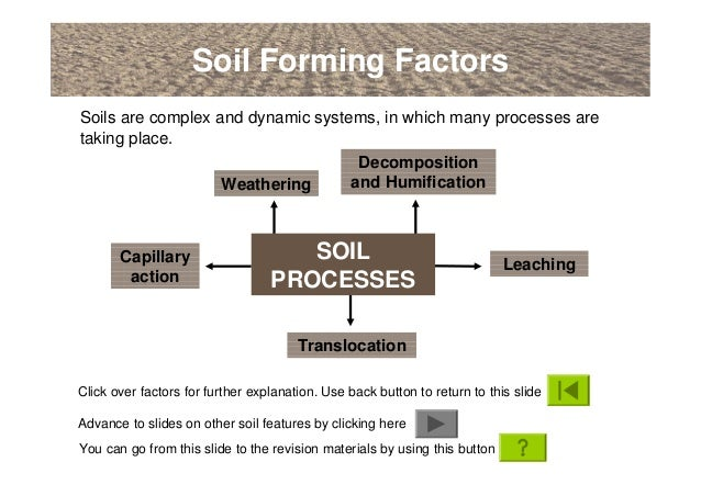 An introduction to soils soil formation and terminology for Explain the formation of soil