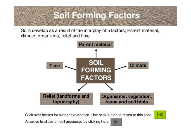 An introduction to soils soil formation and terminology for Soil factors