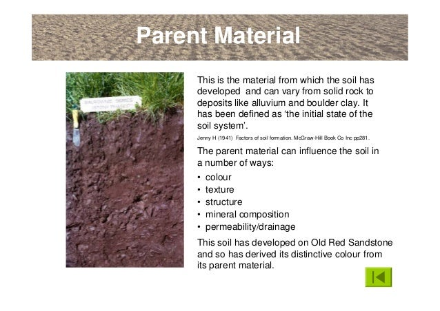 An introduction to soils soil formation and terminology for Soil forming factors