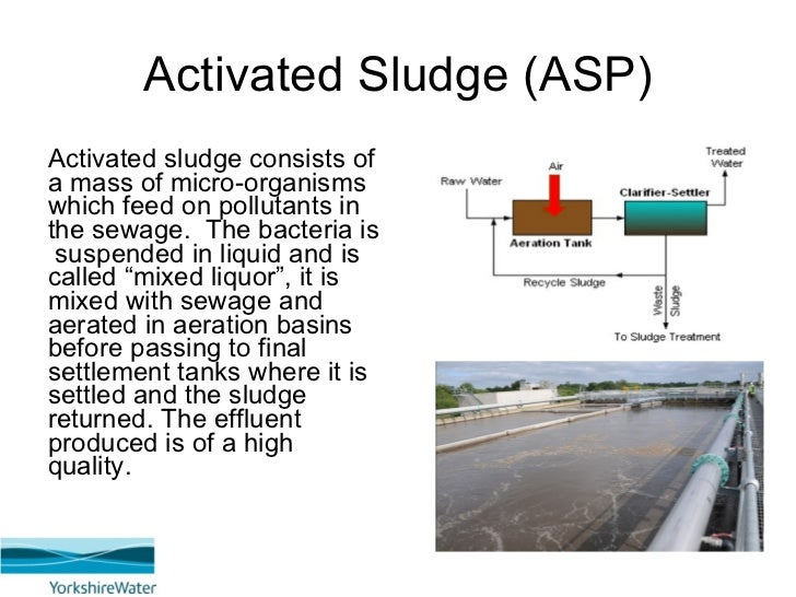 activation sludge Activated sludge process control and troubleshooting class a manual ohio environmental protection agency methodology — page 3 in the early 1990's i become acquainted with the ohio epa staff members that were operating the.
