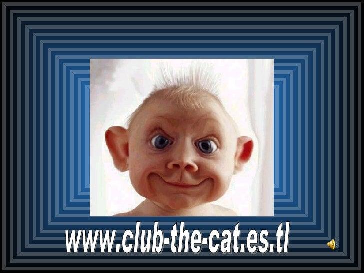 www.club-the-cat.es.tl