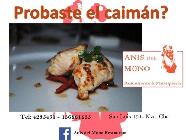 ANIS DEL MONO Restaurante & Marisquería  Tel: 4235451 - 156861655  San Luis 191- Nva. Cba  Anís del Mono Restaurant