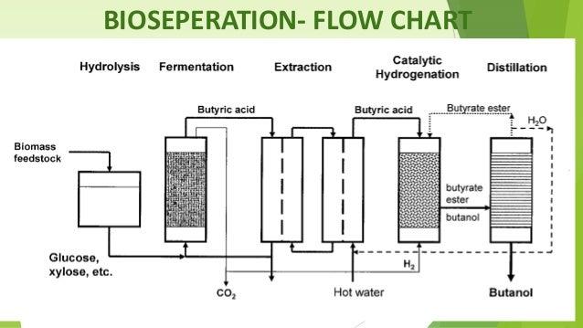 ethanol energy essay Posts about essay on algae biofuel written by santosh tamang.