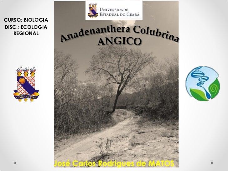 CURSO: BIOLOGIADISC.: ECOLOGIA   REGIONAL                  José Carlos Rodrigues de MATOS