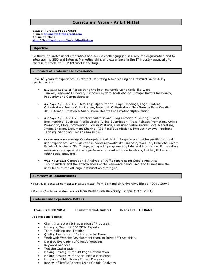 seo resume examples thevillas co