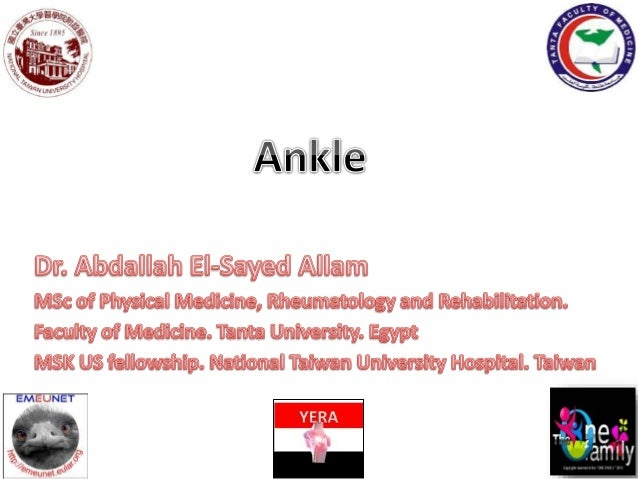 Anterior tibial nerve and vessels