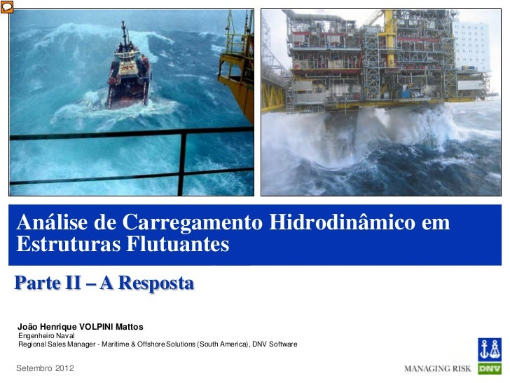 Análise de Carregamento Hidrodinâmico emEstruturas FlutuantesParte II – A RespostaJoão Henrique VOLPINI MattosEngenheiro N...