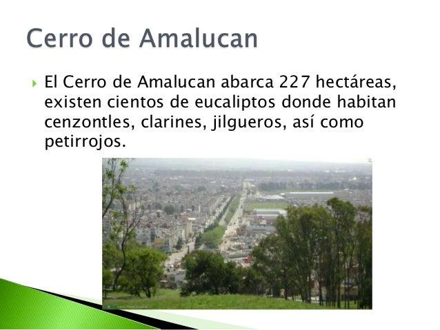 Resultado de imagen para cerro de amalucan