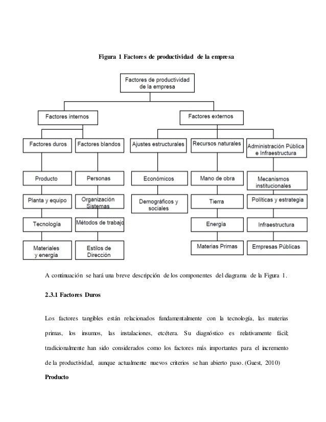 Análisis De Los Factores Internos Blandos De La