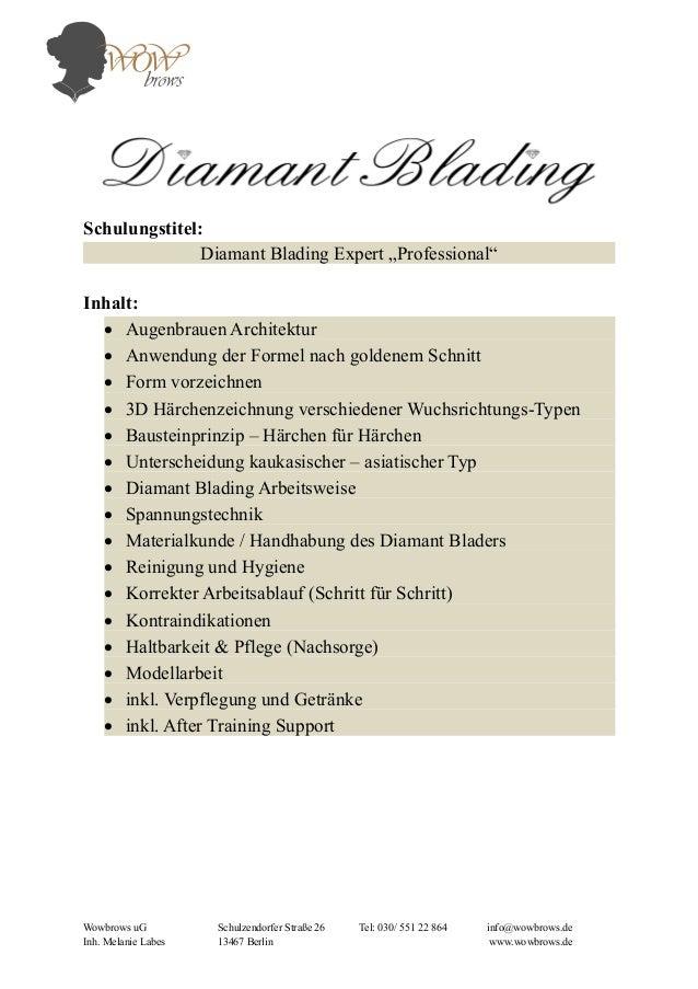 """Schulungstitel: Diamant Blading Expert """"Professional"""" Inhalt:  Augenbrauen Architektur  Anwendung der Formel nach golden..."""