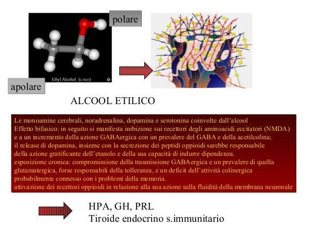 polare  apolare ALCOOL ETILICO Le monoamine cerebrali, noradrenalina, dopamina e serotonina coinvolte dall'alcool Effetto ...