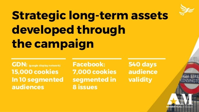Strategic long-term assets developed through the campaign GDN: (google display network) 15,000 cookies In 10 segmented aud...
