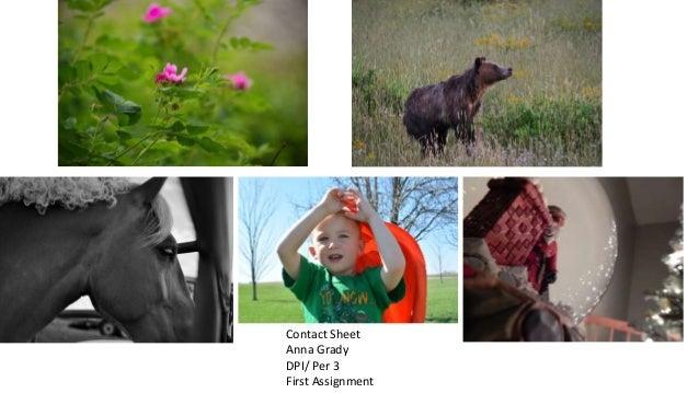 Anna Grady Slide 2