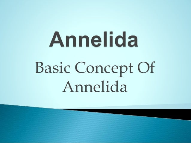 Basic Concept Of Annelida Phylum