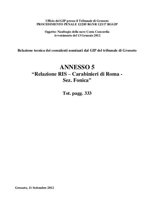 Ufficio del GIP presso il Tribunale di Grosseto              PROCEDIMENTO PENALE 12/285 RGNR 12/117 RGGIP                 ...