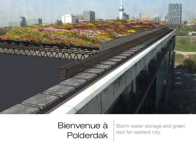 Bienvenue à Polderdak  Storm water storage and green roof for resilient city.