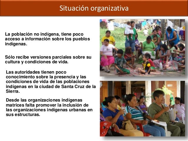 Situación organizativa Desde las organizaciones indígenas matrices falta promover la inclusión de las organizaciones indíg...