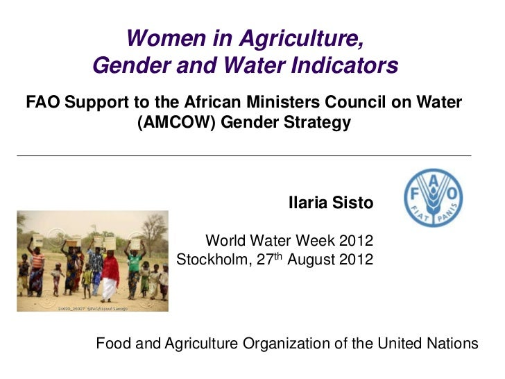 Women in Agriculture,       Gender and Water IndicatorsFAO Support to the African Ministers Council on Water             (...