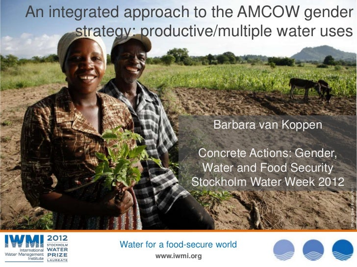 An integrated approach to the AMCOW gender       strategy: productive/multiple water uses                                 ...