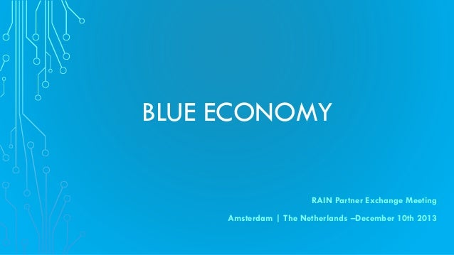 BLUE ECONOMY RAIN Partner Exchange Meeting Amsterdam | The Netherlands –December 10th 2013