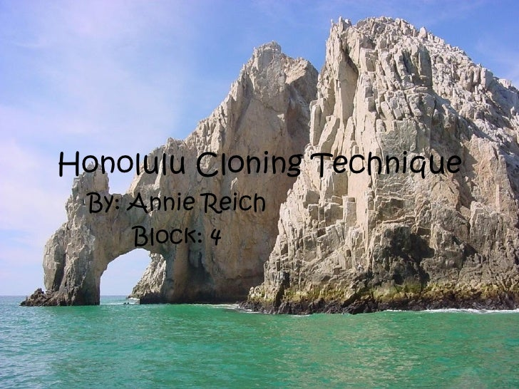 Honolulu Cloning Technique By: Annie Reich     Block: 4