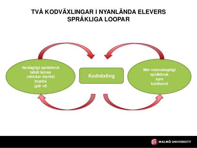 Främja elevers lärande i NO Del 2. NO-undervisning som kommunikativ verksamhet https://lasochskrivportalen.skolverket.se/w...