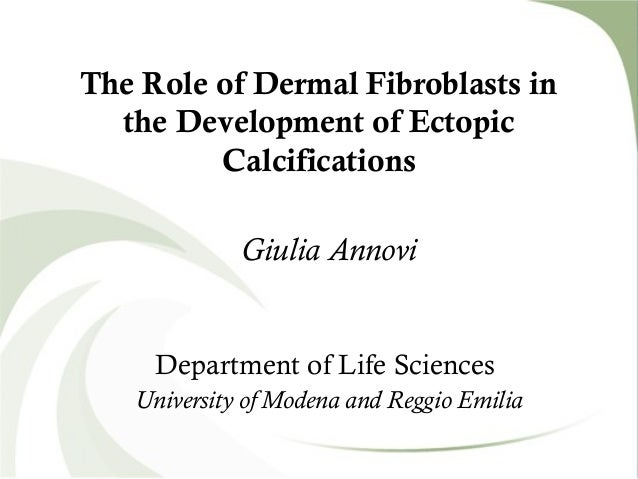 The Role of Dermal Fibroblasts inthe Development of EctopicCalcificationsGiulia AnnoviDepartment of Life SciencesUniversit...