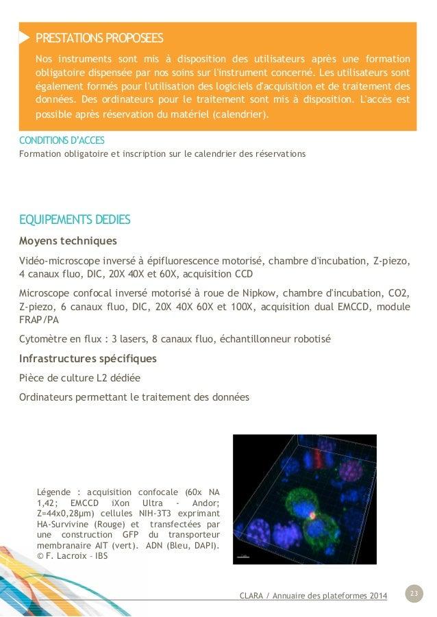 CLARA / Annuaire des plateformes 2014 23 EQUIPEMENTS DEDIES Moyens techniques Vidéo-microscope inversé à épifluorescence m...
