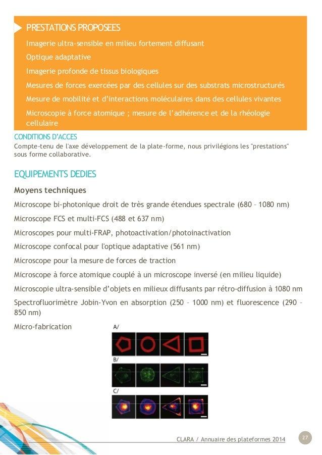 CLARA / Annuaire des plateformes 2014 27 EQUIPEMENTS DEDIES Moyens techniques Microscope bi-photonique droit de très grand...