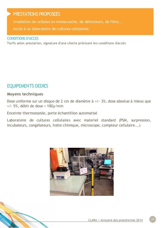 CLARA / Annuaire des plateformes 2014 39 EQUIPEMENTS DEDIES Moyens techniques Dose uniforme sur un disque de 2 cm de diamè...