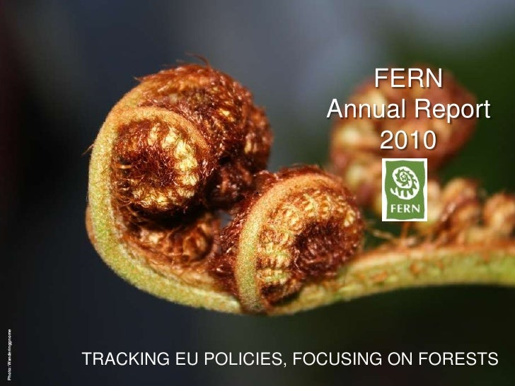 FERN<br />Annual Report 2010<br />Photo: Wanderinggnome<br />TRACKING EU POLICIES, FOCUSING ON FORESTS<br />