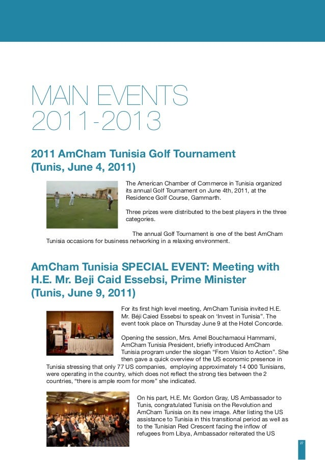 AmCham : Annual report 2013